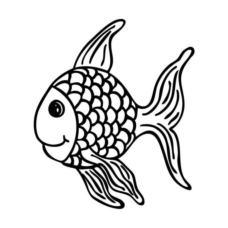 Fisch Fridolin Als Stempelmotiv Für Viele Anlässe Und Gelegenheiten